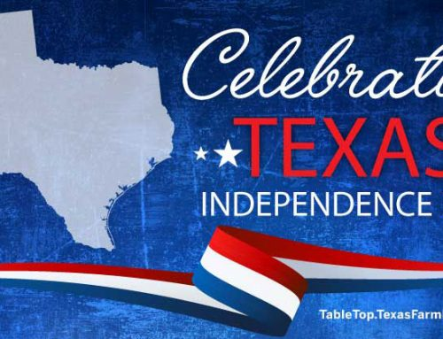 Celebrating Texas Independence Day
