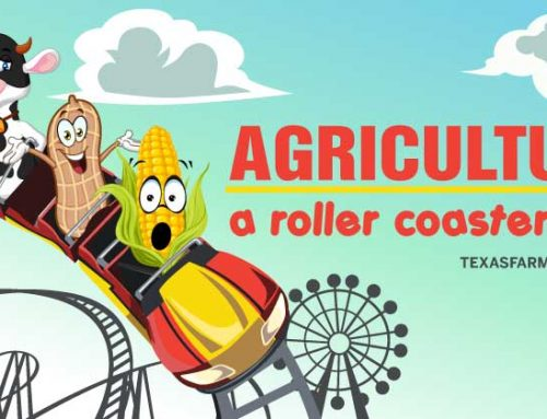 Take a ride on the agricultural roller coaster