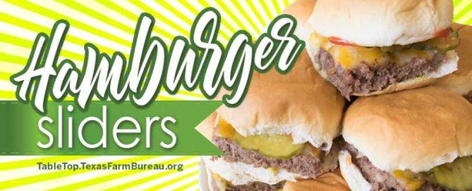 HamburgerSliders