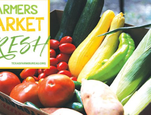 Summertime is market time