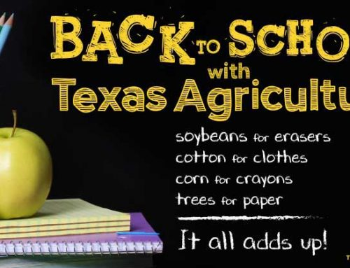 Back-to-school shopping showcases Texas agriculture