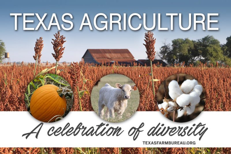 Texas agriculture is diverse