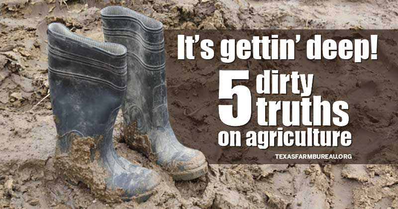 dirty truths on agriculture