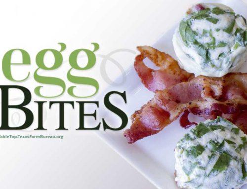 Egg Bites