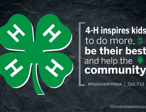 4-H inspires kids to do more in Texas