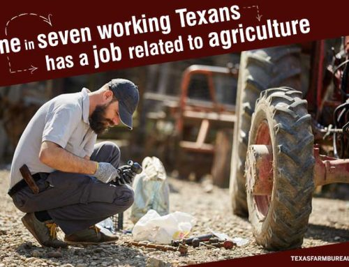 Agriculture is for all Texans