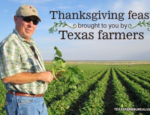 A Texas Turkey Day feast