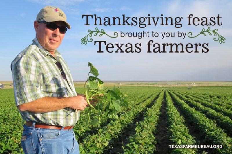 turkey day_thanksgiving feast