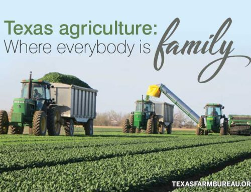 We're all family in agriculture