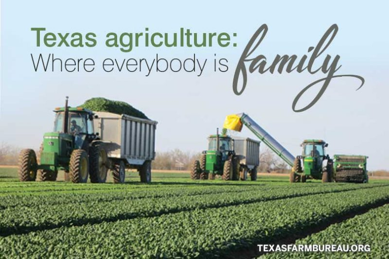 everybody is family in agriculture