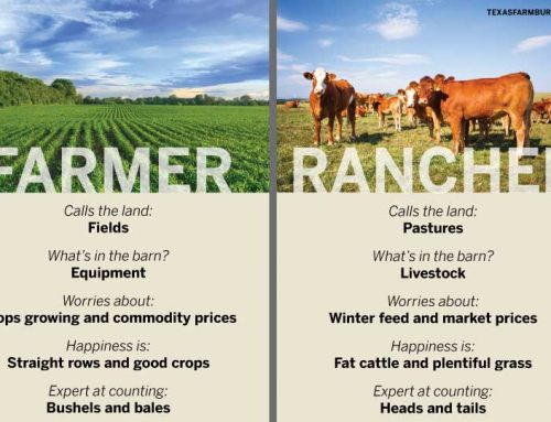 What's the difference between farmers and ranchers?