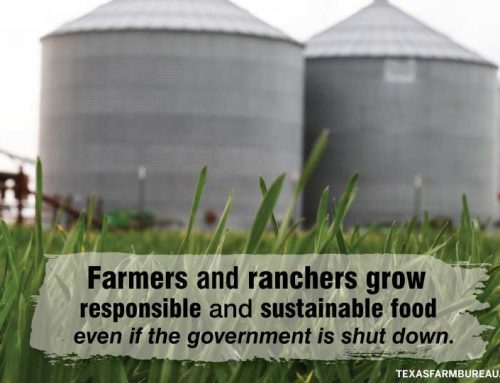 Agriculture and the government shutdown