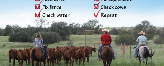 how to be a rancher