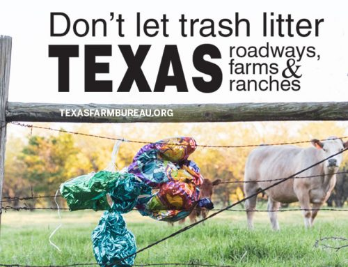 Litter, balloons trash Texas