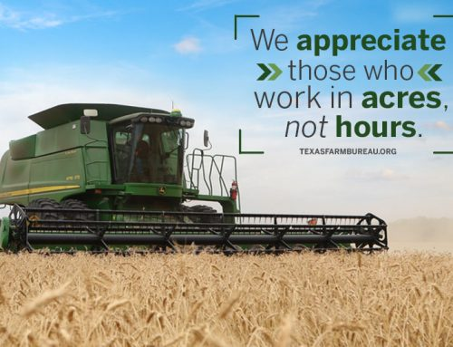 10 reasons to respect Texas farmers, ranchers