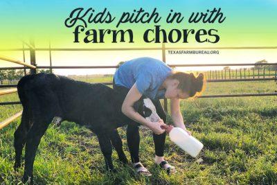 summer farm chores