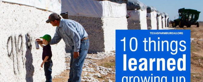 10 things kids learn growing up on a farm