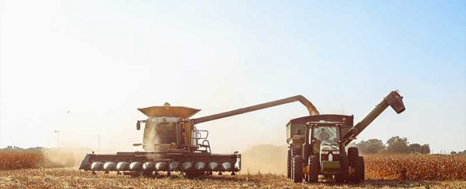Harvest season is full of long hours and stress. Kody Hajda shares her view of harvest on Texas Table Top.