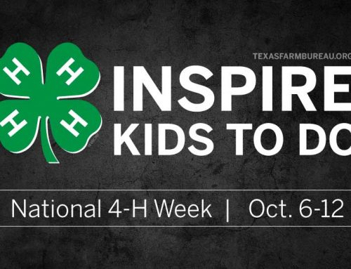 4-H inspires kids to do, learn