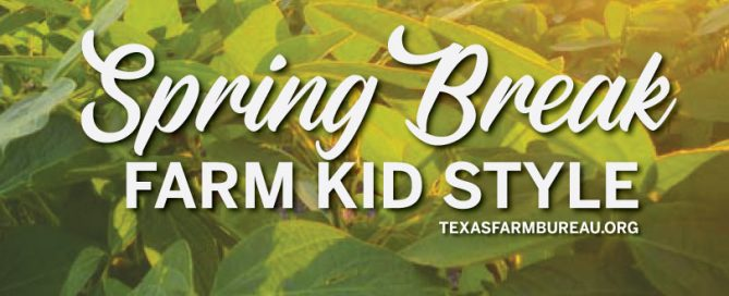 Spring break offers farm kids a chance to get dirty, have fun, help with chores and explore the outdoors! Julie Tomascik has more on Texas Table Top.