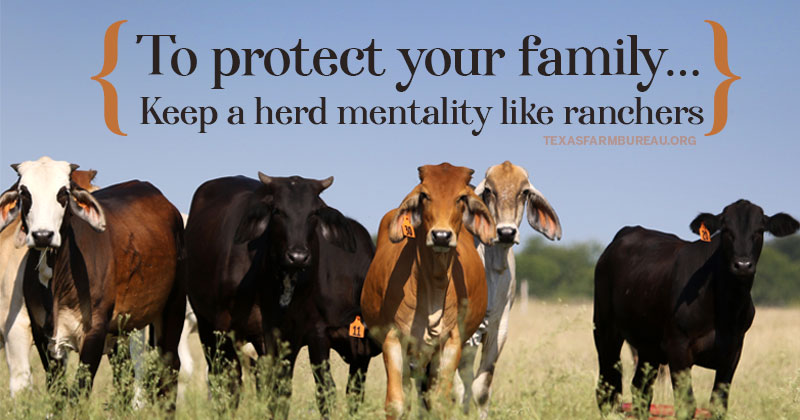 Herd health practices prevent disease