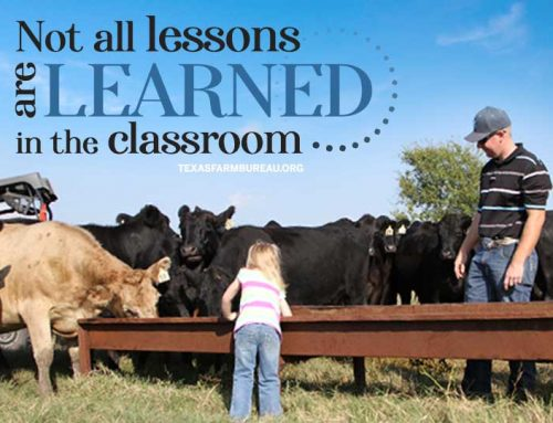 Agriculture's classroom is full of lessons