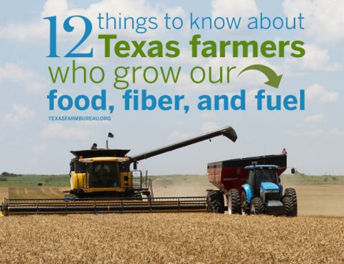 12 things to know about Texas farmers