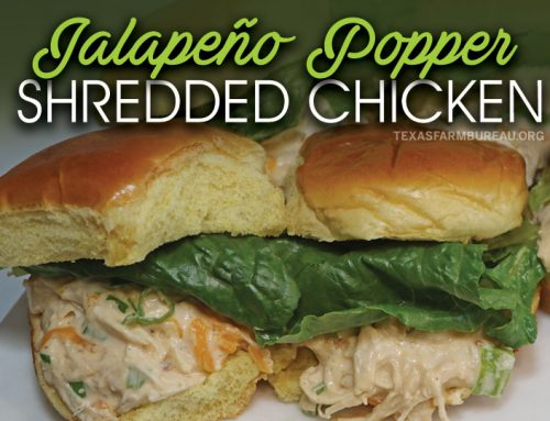 Instant Pot jalapeño popper shredded chicken