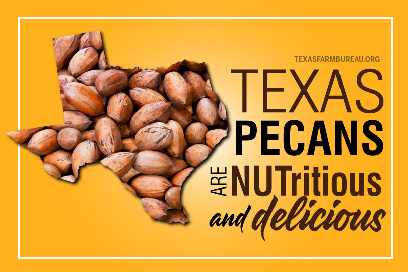 Texas pecans are NUTritious and delicious