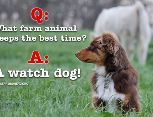 14 of the best ag jokes on the internet
