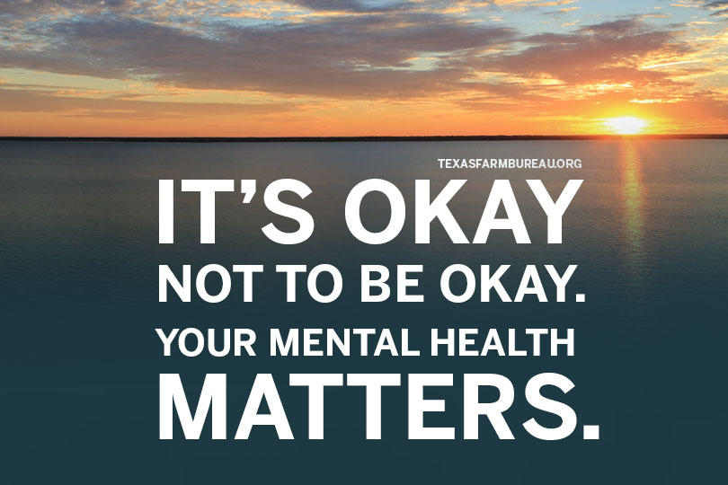 Stress and mental health conditions are often undertreated in rural populations. Be kind to yourself and stay alert for signals that friends may be feeling the pressure this year.