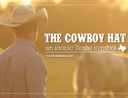 The cowboy hat is a true Texas icon