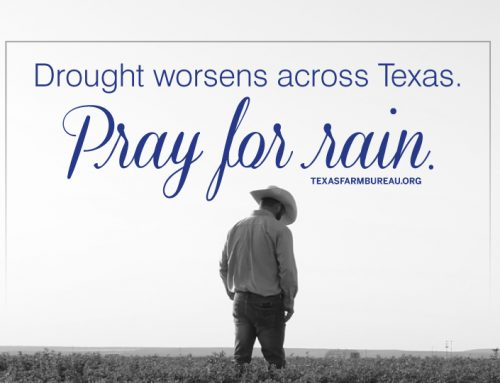 Texas drought worsens