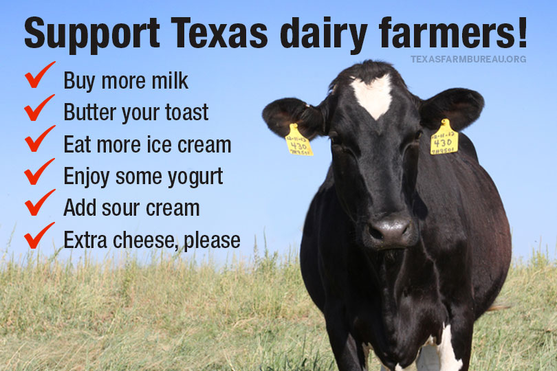 """Have you """"herd""""? Texas is legenDAIRY! Learn a few dairy good facts on Texas Table Top"""